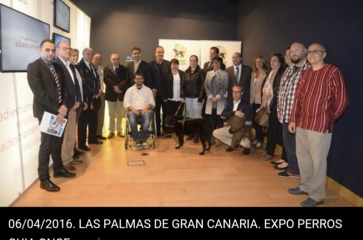 """Exposición Perros Guía de la Once """"25 años caminando juntos"""" 06/04/2016"""